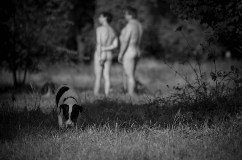 Tags: art, dog, men, naked, naturist, nude, park, photography